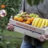 KiKa steunen door vers fruit op het werk te eten? Dat kan!
